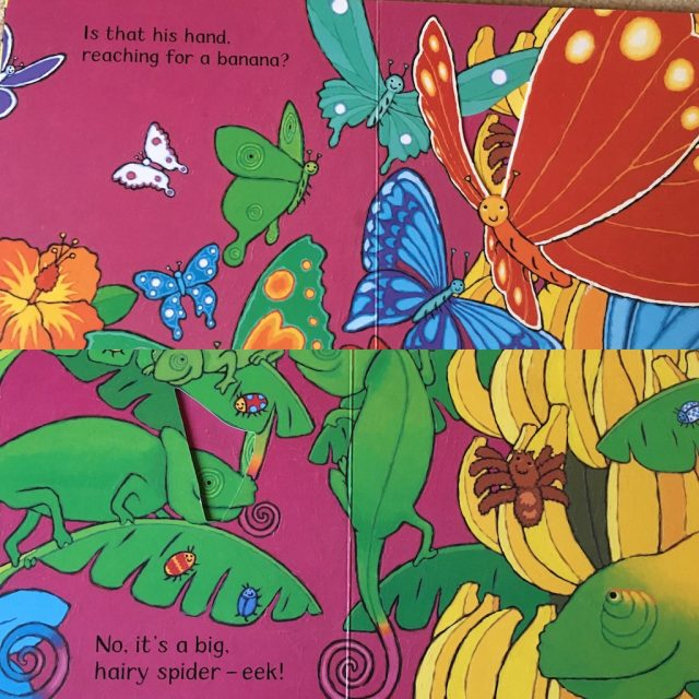 Our Favourite Toddler Books - where's that monkey?