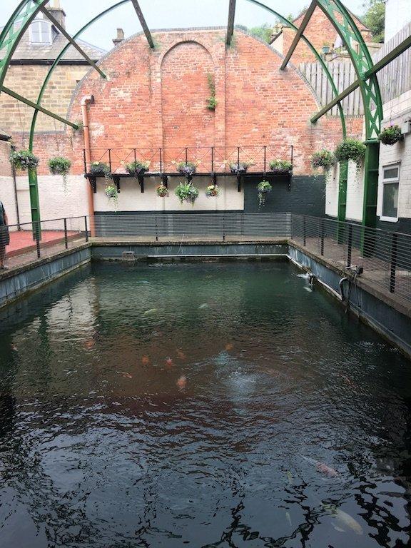Matlock Bath Aquarium Spa