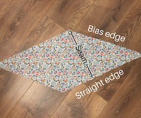 Straight edges and bias edges