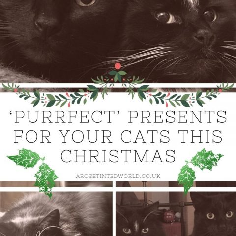 Top Gifts For Your Cat This Christmas