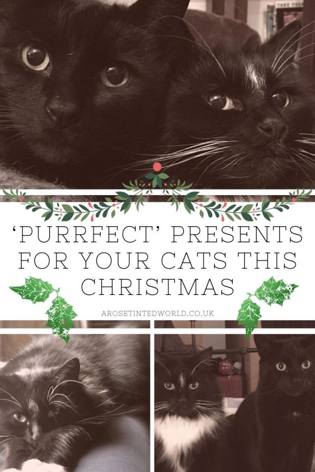 Top Gifts for Your Cat this Christmas - here are some great ideas for cat lovers - what to buy your cat this Xmas - Christmas gifts for cats and cat owners. The purr-fect present for your feline friends and furry companions. Perfect puss products. Find some inspiration in this Gift guide for crazy cat people. #Christmasgifts #christmasgiftideas #catgifts #catgiftideas #giftsforcats #catlovers #catpresents #catpresentideas #catlovergifts #catloversgiftsideas #catproducts