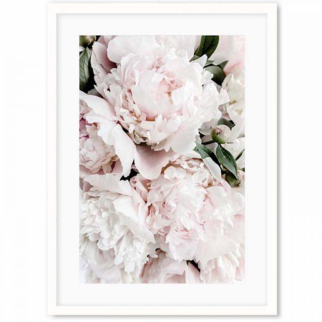 Abstract House white frame rose.webp