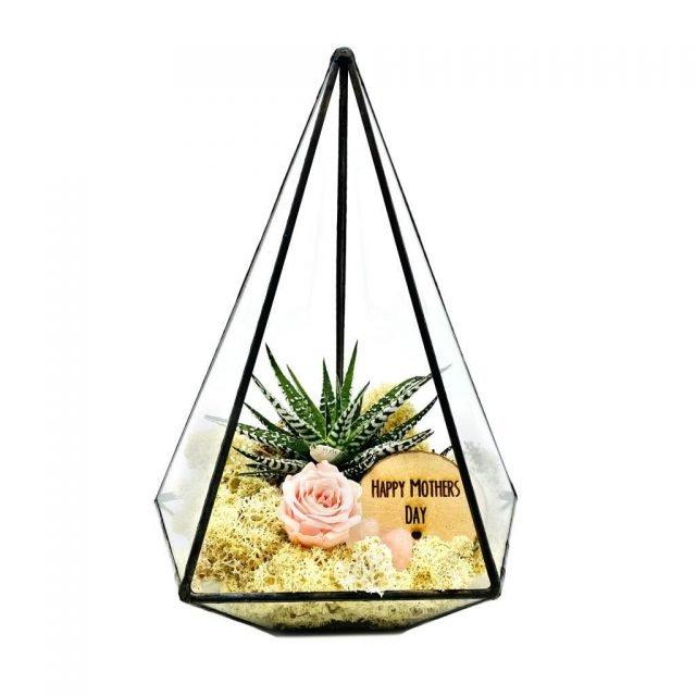 The urban botanist terrarium
