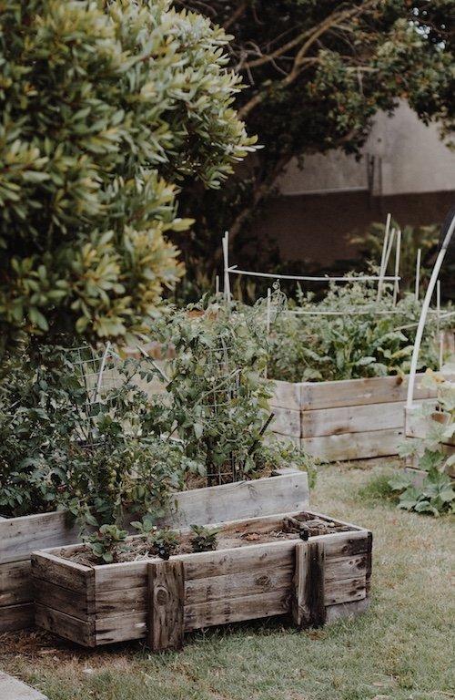 Netting For Your Garden