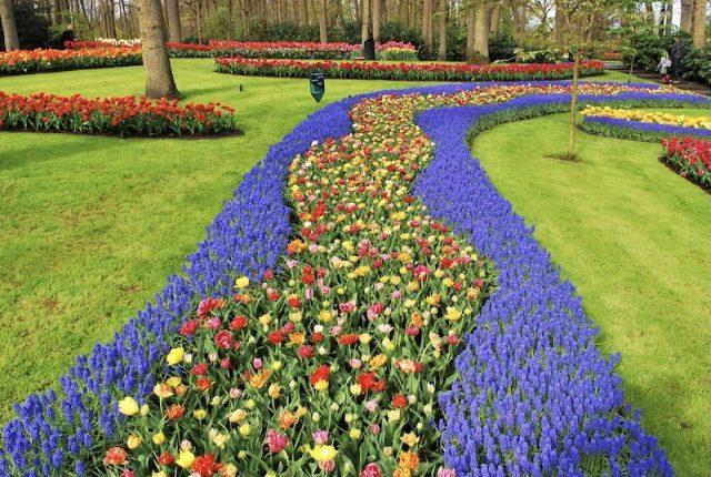 Dutch Tulip Festival - De Keukenhof
